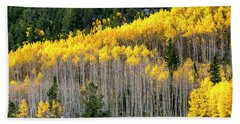 Aspen Trees In Fall Color Bath Towel