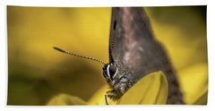 Banded Hairstreak On Coreopsis Hand Towel