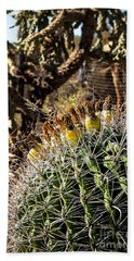 Hand Towel featuring the photograph Barrel Cactus by Lawrence Burry