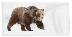 Bear Hand Towel by Steve McKinzie
