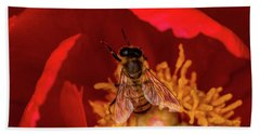 Hand Towel featuring the photograph Bee by Jay Stockhaus