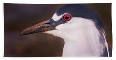 Black-crowned Night Heron  Hand Towel
