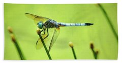 Bath Towel featuring the photograph Blue Dasher Dragonfly by Sandi OReilly