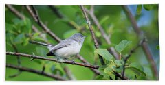 Bath Towel featuring the photograph Blue-gray Gnatcatcher by Gary Hall