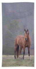 Brown Horse In Fog Hand Towel