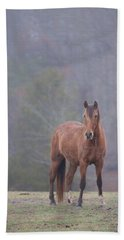 Brown Horse In Fog Bath Towel