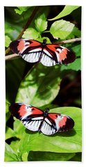 Butterflies Hand Towel by Sandy Taylor