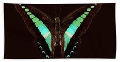 Butterfly Species Graphium Sarpedon Hand Towel