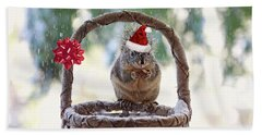 Hand Towel featuring the photograph Christmas Squirrel by Peggy Collins