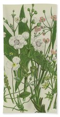 Common Star Fruit, Greater Water Plantain And Other Plants Hand Towel