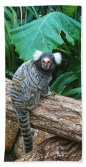 Commonmarmoset  Bath Towel