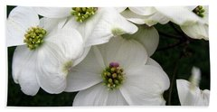 Dogwood Branch Hand Towel