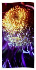 Dying Purple Chrysanthemum Flower Background Hand Towel by John Williams