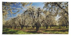 Hand Towel featuring the photograph Everything Is New Again by Laurie Search