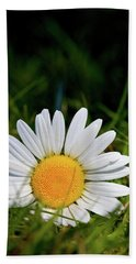 Hand Towel featuring the photograph Fallen Daisy by Scott Holmes