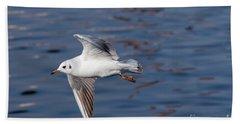 Flying Gull Above Water Bath Towel by Michal Boubin