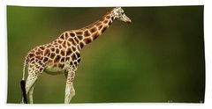 Giraffe Hand Towel by Charuhas Images