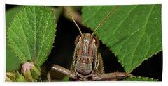 Grasshopper Hand Towel