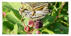 Grasshopper Love Hand Towel