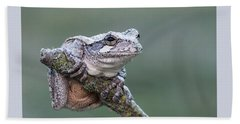 Gray Tree Frog Bath Towel