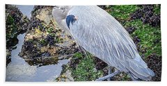 Hand Towel featuring the photograph Great Blue Heron by AJ Schibig