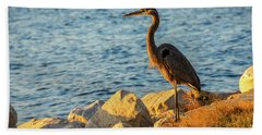Great Blue Heron At Sunset Hand Towel