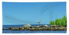 Great Blue Heron On The Chesapeake Bay Hand Towel