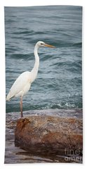 Great White Heron Hand Towel by Elena Elisseeva