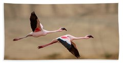Greater Flamingos Phoenicopterus Roseus Hand Towel