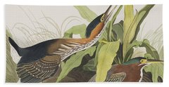 Green Heron Hand Towel by John James Audubon