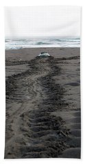 Green Sea Turtle Returning To Sea Hand Towel
