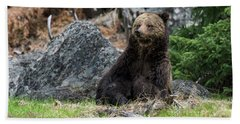 Grizzly Manor Hand Towel by Scott Warner