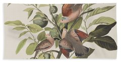 Ground Dove Hand Towel