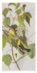 Hemlock Warbler Hand Towel by John James Audubon