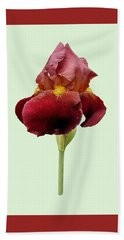 Hand Towel featuring the photograph Iris Vitafire Green Background by Paul Gulliver