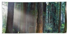 Keepers Of The Light Hand Towel by Mark Alder