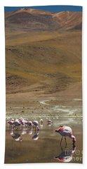 Hand Towel featuring the photograph Laguna Colorada, Andes, Bolivia by Gabor Pozsgai