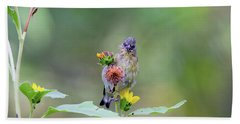 Lesser Goldfinch 4036 Hand Towel