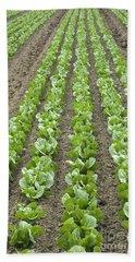 Lettuce Field Bath Towel
