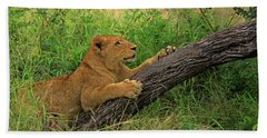 Lioness Hand Towel