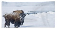 Lone Bison Bath Towel