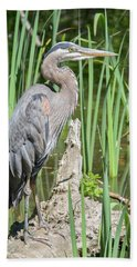 Lost Lagoon Heron Hand Towel by Ross G Strachan