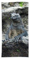 Bath Towel featuring the photograph Marine Iguana, Amblyrhynchus Cristatus by Breck Bartholomew