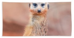 Meerkat Hand Towel by Stephanie Hayes