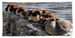 Merganser Family Hand Towel