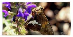 Moth Snack Hand Towel