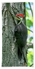 Mr. Pileated Woodpecker Bath Towel