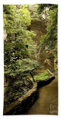 Bath Towel featuring the photograph Natural Bridge  by Raymond Earley