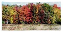 New Hampshire's True Colors Bath Towel by Joseph Hendrix