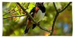 Towhee In Song Hand Towel